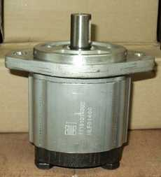 Bomba de engrenagem (modelo: 11101014002)