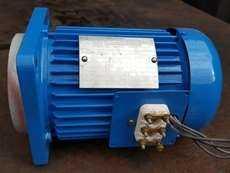 Motor de indução trifásico (1/3HP 1655RPM)